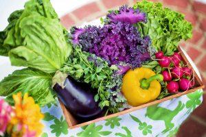 איך שמירה על תזונה נכונה משפיעה על הבריאות שלנו